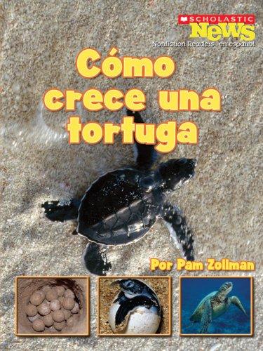 Como Crece una Tortuga (Scholastic News Nonficiton Readers En Espanol) por Pam Zollman