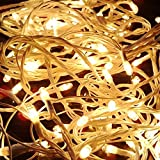 #1: Blackberry Overseas Yellow Colored Decorative RICE Lights, 15 metre Long
