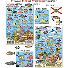 Franko Maps Mini Florida Reef Creatures Fish ID for Scuba Divers and Snorkelers