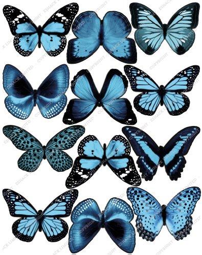 chnittene Hellblau Essbare Schmetterlingskuchen Topper (Tortenaufleger, Bedruckte Oblaten, Oblatenaufleger) ()