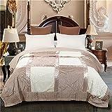 Simonshop luxurious Plush raschel coperta spessore caldo invernale per tutte le stagioni collezione, Camel, 220x240cm