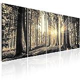 murando - Bilder Wald 200x80 cm Vlies Leinwandbild 5 TLG Kunstdruck modern Wandbilder XXL Wanddekoration Design Wand Bild - Waldlandschaft Natur Panorama Baum c-C-0177-b-o