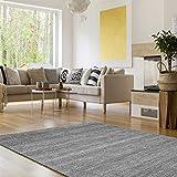 Suchergebnis Auf Amazon.de Für: 290 X 200 - Teppiche / Teppiche ... Blauer Teppich Wohnzimmer