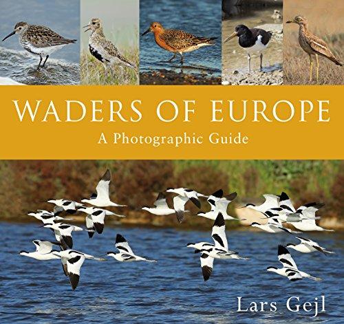 Waders of Europe (Angeln Wader)