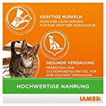 IAMS Adult Cat Lamb 15