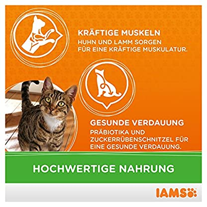 IAMS Adult Cat Lamb 5
