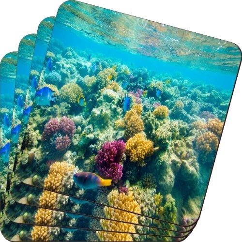 Rikki Knight Tropische Fische in Tank Design weichen quadratisch Beer Untersetzer (Set von 2), multicolor