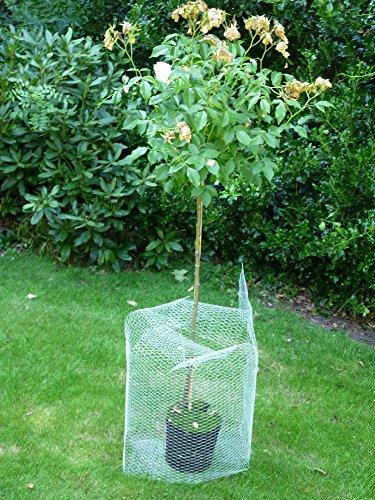 Wühlmauskorb Wurzelschutz der jungen Bäume und Pflanzen vor Wühlmaus Schermaus Wurzel Schutz 50cm x 50 - Zaun Verteidigung