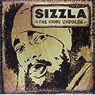 The Story Unfolds [Vinyl LP]