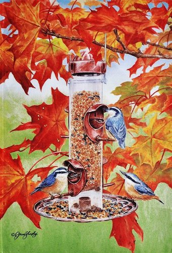 Backyard Birds in autumn leaves Fall groß Flagge 71,1 x 101,6 cm für Halloween Thanksgiving Veranda Haus Hof Garten Schule Klassenzimmer Bibliothek Büro Tür Dekorationen Kirche Patio Outdoor bannner