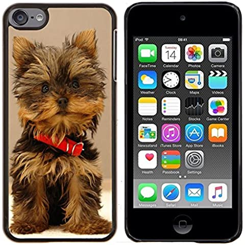 # Duro Custodia protettiva Caso Cassa PC Coprire Hard Protective Case forApple iPod Touch 6 6th Touch6 # Carino Yorki Yorkie Terrier Dog Cute Yorki Yorkie Terrier Dog# Gift Phone Case Housing