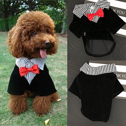 Hunde Kostüm, Legendog Kleider für Hunde Hochzeit Haustier Kostüme Gentleman Tuxedo Anzug Hundekleidung Hund Hochzeitshemd mit Nackenbogen