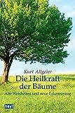 Die Heilkraft der Bäume: Alte Weisheiten und neue Erkenntnisse