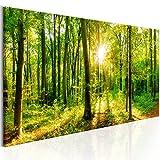 murando - Bilder Wald 135x45 cm - Leinwandbilder - Fertig Aufgespannt - Vlies Leinwand - 1 Teilig - Wandbilder XXL - Kunstdrucke - Wandbild - Waldlandschaft Natur Wald Panorama Baum c-B-0184-b-a