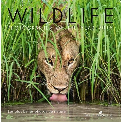 Wildlife Photographer of the year : Les plus belles photos de nature