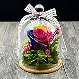 Handgemachte Glasgeschenke mit nie verwelkten wirklichen Rosen am Valentinstag, Jahrestag, Geburtstag, Hochzeit