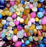 #8: ALS Fashion Multicolour Shiny Marble Stone Pebbles For Vase Fillers Outdoor/Garden Decoration (Multicolour-1 Kg)
