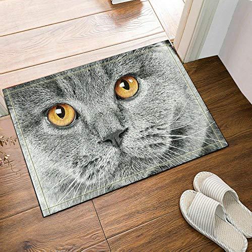 dsgrdhrty Cartoon graue Katze gelbe Augen weißer Bart rutschfeste Badezimmer Dusche Küche Samt Cartoon HD Landschaft Innenkissen