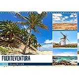FUERTEVENTURA - Inselblick (Wandkalender 2019 DIN A4 quer)