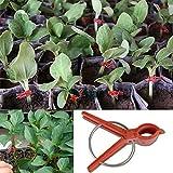 100?pcs Plastique durable Fleur de légumes Tomate Greffe outils de jardinage