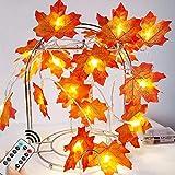 5M Herbst Ahornblatt Lichterketten 50 LED Blättergirlande 8 Modis (mit Fernbedienung) IP44 Batteriebetrieben für Thanksgiving Raumdekoration Geburtstagsfeier Garten