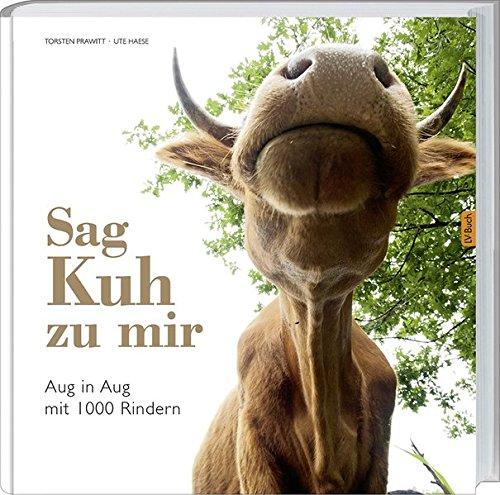 Sag\' Kuh zu mir: Aug in Aug mit 1000 Rindern.