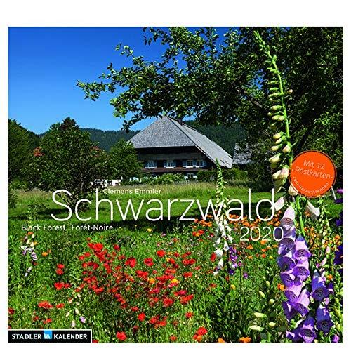 Schwarzwald 2020: ()