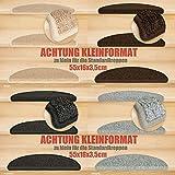 Kettelservice-Metzker® Stufenmatten Kleinformat für Raumspartreppen/Wendeltreppen 55x16x3,5cm inkl. Fleckentferner, Grau 15 Stück