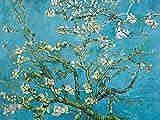Vincent Van Gogh Poster Papier Peint - Branche D'Amandier en Fleurs, 1890, 2 Parties (240 x 180 cm)