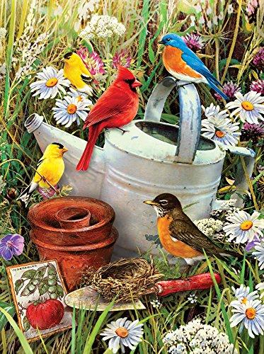 Royal & Langnickel PJS71 Malen nach Zahlen – Gartenvögel - 3