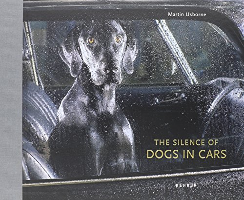 Silence of Dogs in Cars, The by Martin Usborne (2012-12-13)