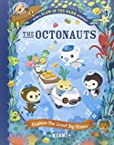 Picture Of The Octonauts Explore The Great Big Ocean