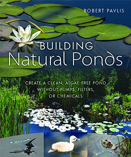 building-natural-ponds-create-a-clean-algae-free-pond-without-pumps-filters-or-chemicals