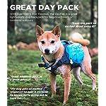 Outward Hound DayPak for Dog, Medium, Blue 9