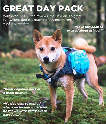 Outward Hound DayPak for Dog, Medium, Blue 3