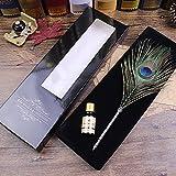 Ecvision Antique Plume stylo en métal nibbed écriture stylo de calligraphie avec Lot de plumes (Paon)