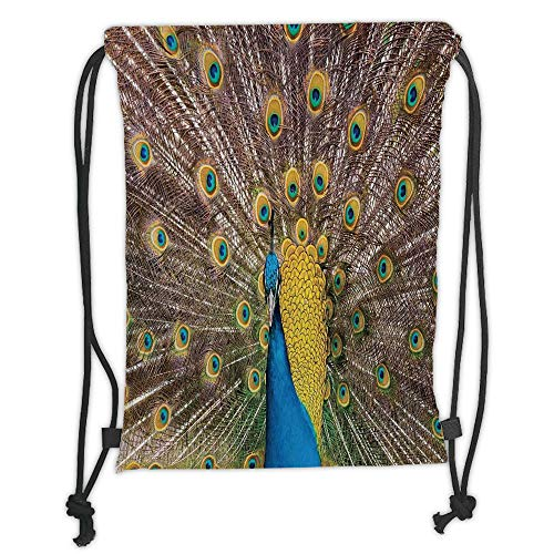 Drawstring Backpacks Bags,Peacock Decor,Peacock Displaying Feathers Golden Vibrant Colors Eye Shaped Patterns Picture, Soft Satin,5 Liter Capacity,Adjustable String Closure,The Sty (Feathers Displaying Peacock)