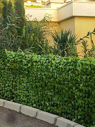 Haie artificielle feuilles de Rosier coloris vert tendre, 1,00m x 3m -PEGANE-