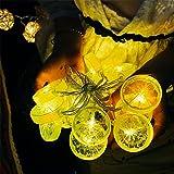 3M 20LED Zitrone Lichterkette Batteriebetriebene Weihnachtliche mit Lichterkette Warmweiß - Transparente Stern für Party Deko, Garten Deko, Weihnachten, Hotel, Fest Deko,Hochzeit, Geburtstag
