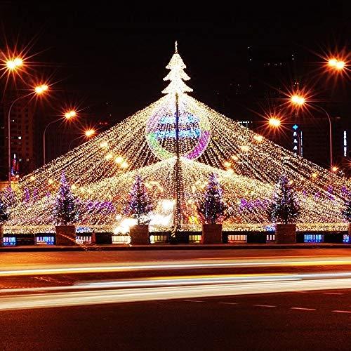 FROADP 3x2 m LED wasserdichte Indoor Outdoor Net lights Lichternetz Vorhang Lichter Netz Beleuchtung Deko Weihnachten Halloween Hochzeit Party oder Stimmung Lichter(Warmweiß)