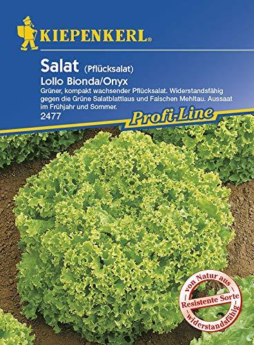 Kiepenkerl 2477 Salat Lollo Bionda/Onyx (Salatsamen)