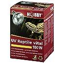 Hobby 37316 UV-Reptile vital Desert, 100 W