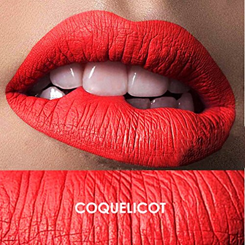 vwh-matte-lip-gloss-22color-waterproof-sexy-long-lasting-lipstick-1-coquelicot