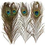 Baker Ross Plumas Naturales de Pavo Real (Paquete de 10) para manualidaes Infantiles