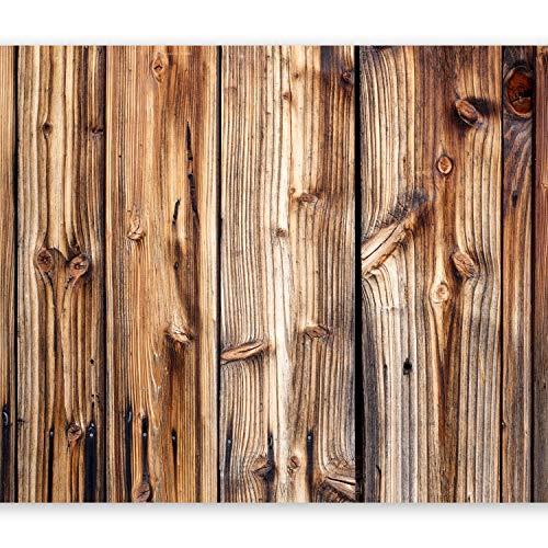 murando Papier peint intissé 400x280 cm Décoration Murale XXL Poster Tableaux Muraux Tapisserie Photo Trompe l'oeil Bois f-B-0062-a-a