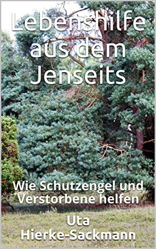 Lebenshilfe aus dem Jenseits: Wie Schutzengel und Verstorbene helfen (Die Edition Lebensbibliotheken 3)