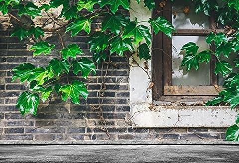 Aaloolaa 2.7x 1.8m vintage Mur de briques Fresh Vines Leaves Photographie Toile de fond Nostalgia Rebord de fenêtre Photo Shoot Fond Adulte Homme Femme garçon fille Kid artistique Portrait Props Video Studio
