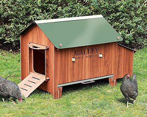 ferme de beaumont poulailler gality bergame poulailler abri poules with poulailler 4 poules pas cher. Black Bedroom Furniture Sets. Home Design Ideas