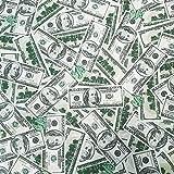 Stoff Meterware Baumwolle Dollar Banknoten Geldscheine grau