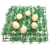 [Sponsored]SUVE Wooden Fake EGGs - 6 Pcs / Wooden Egg Toy Playset/ Pretend Play Eggs For Kids / Birthday Return Gifts /Fake EGGS